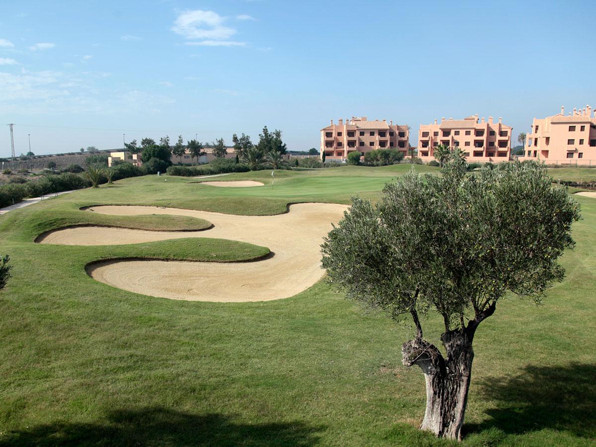 la-Serena-Golf-3